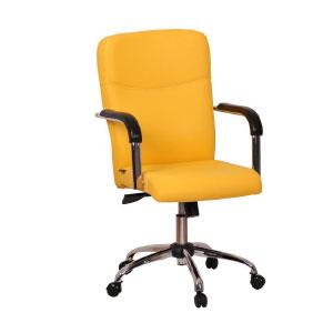 صندلی اداری گلدسیت D210